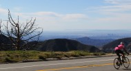 Pink Cyclist Angeles Crest